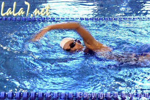 水泳 泳ぐ プール