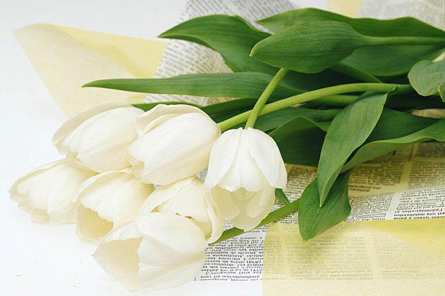 白い花の花束