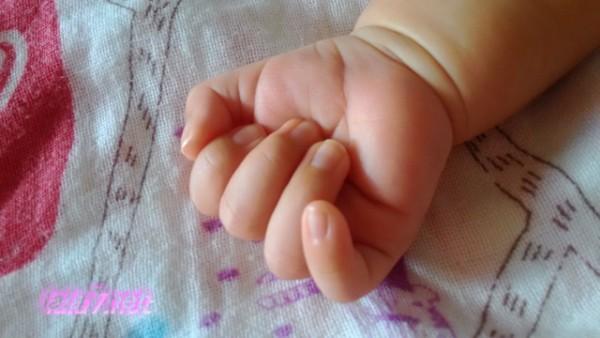 生後一か月半の孫赤ちゃんの手