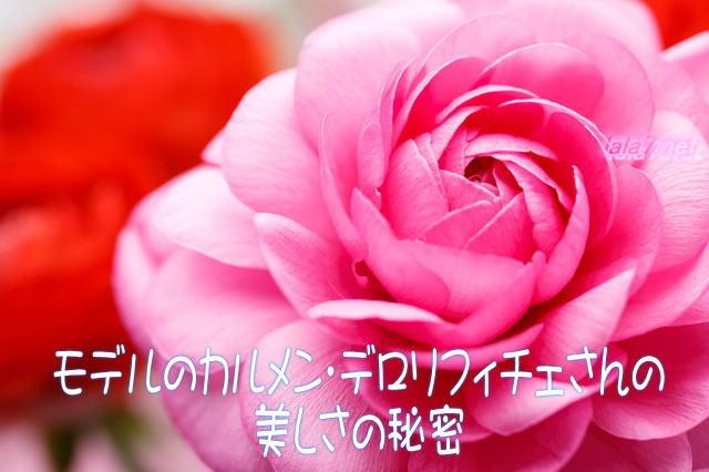 モデルのカルメン・デロリフィチェさん美しさの秘密