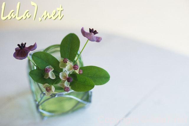 ガラス瓶(グラス)に入った紫色の小さな花