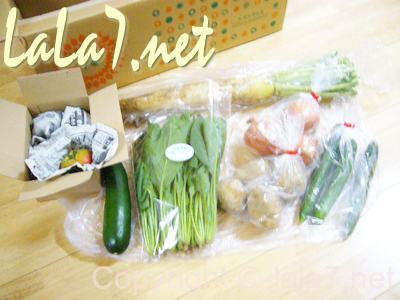 約8割が無農薬という安心もあり野菜本来の美味しさも味わえます。