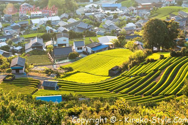 日本の田舎の風景