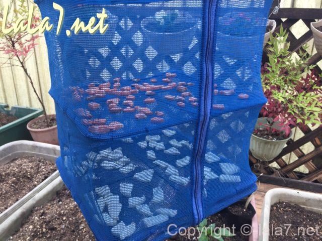 ドライネット(干しかご)で大根と人参を乾燥させている様子
