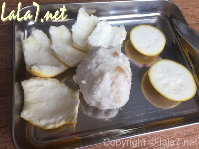 河内晩柑(ジューシーオレンジ・美生柑)の皮のむき方・皮を親指でむく