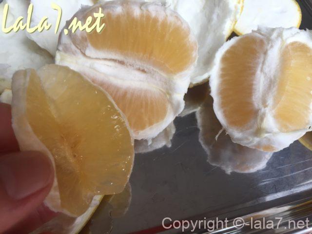河内晩柑(ジューシーオレンジ・美生柑)の皮のむき方・房の背中に切れ目をいれる