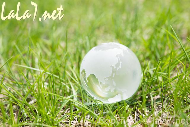 庭 芝 水晶